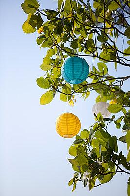 Lampions I - p1095m1005269 von nika