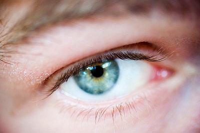 Blue eye, close-up - p312m799100f by Ellinor Hall