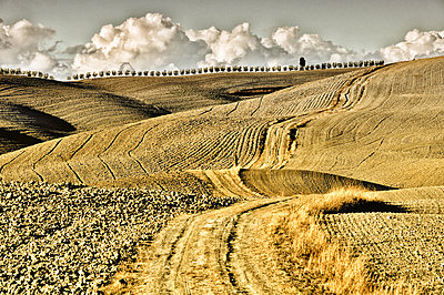 Stubble field in Tuscan landscape - p416m1056901 by goZooma