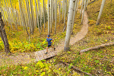 Man trail runs through aspen forest with fall color in Vail, Colorado - p1166m2137902 by Cavan Images