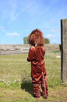 Kleiner Löwe steht am Zaun - p045m1031235 von Jasmin Sander