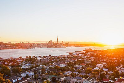 New Zealand, Auckland, Skyline with Sky Tower at sunset - p300m1028872f by Gaby Wojciech