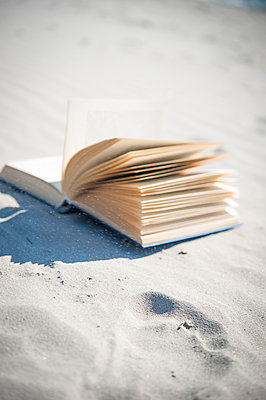 Reading - p936m939730 by Mike Hofstetter