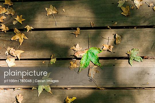 p1166m1183048 von Cavan Images