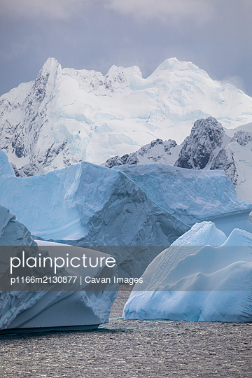 Icebergs and snowy mountains - p1166m2130877 by Cavan Images