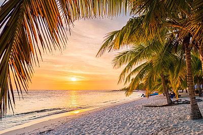 Mano Juan, Saona Island, East National Park (Parque Nacional del Este), Dominican Republic, Caribbean Sea. - p651m2006916 by Marco Bottigelli