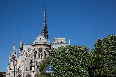 Notre Dame de Paris - p940m1132495 by Bénédite Topuz