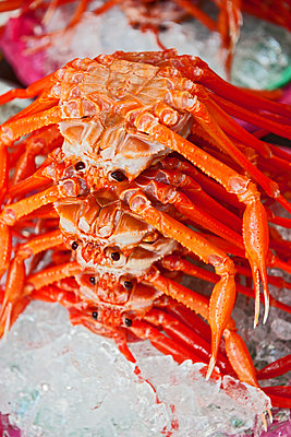 crabs stacked upon each other at produce market on Korea - p1166m2268397 by Cavan Images