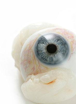 Augenprothese - p4500370 von Hanka Steidle