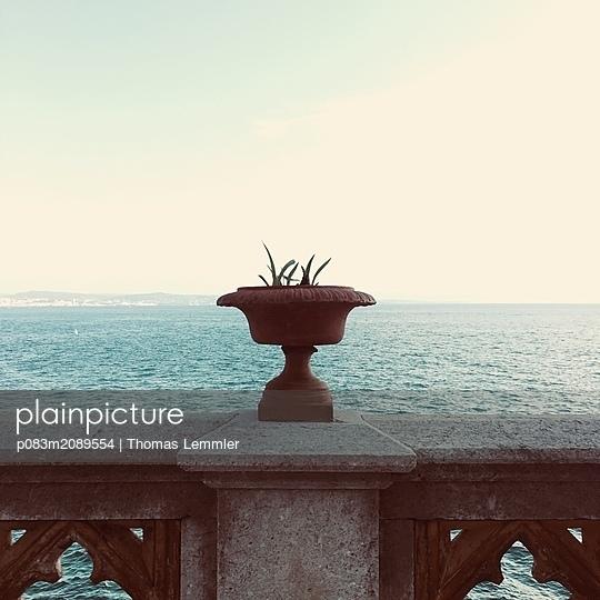 p083m2089554 by Thomas Lemmler
