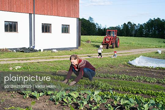 p312m2139529 von Viktor Holm
