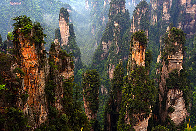 Zhangjiajie National Forest Park, China - p523m1148693 von Lisa Kimmell