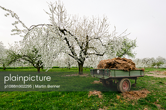 Rheingau - p1088m902295 by Martin Benner