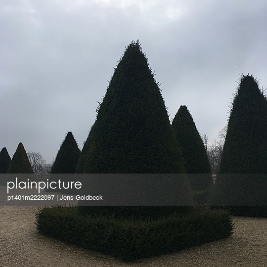 Garden landscaping, topiary, Saint Cloud - p1401m2222097 by Jens Goldbeck