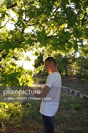 Jugendlicher mit Kurzhaarschnitt unter einem Baum - p1468m1584983 von Philippe Leroux