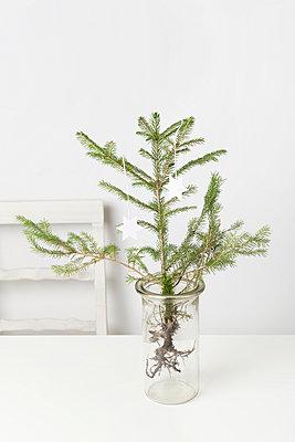 Weihnachten - p1149m938337 von Yvonne Röder