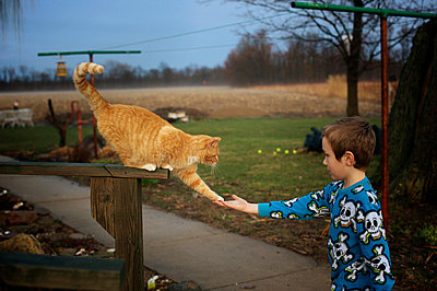 Boy with Cat - p1169m955997 by Tytia Habing