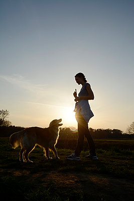 Young woman training Golden Retriever on meadow at sunset - p300m950278f by Bernd Friedel