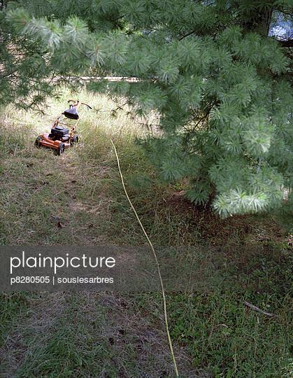 Rasen mähen - p8280505 von souslesarbres