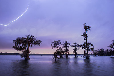 Scenic view of trees in Lake Martin against cloudy sky during thunderstorm - p1166m2025587 by Cavan Images