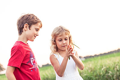 Smiling boy looking at blond sister playing with leaf in front of sky - p300m2277726 by Wilfried Feder