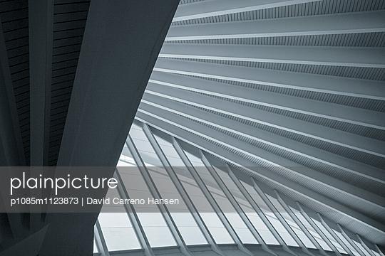 Grafisches Flughafendach - p1085m1123873 von David Carreno Hansen