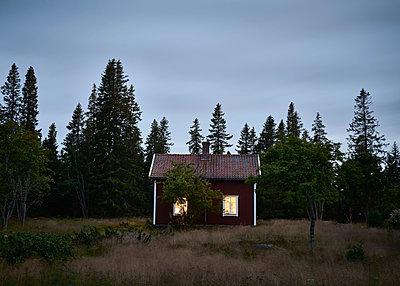 Schwedisches Haus bei Nacht - p1124m1165608 von Willing-Holtz