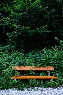 Bench - p280m2150631 by victor s. brigola