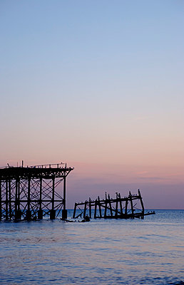 Remains of West Pier; Brighton - p5970207 by Tim Robinson