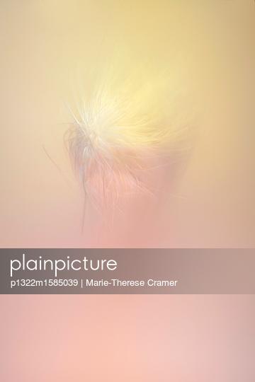 Filigrane Malerei vor Hintergrund in Rosa und Gelb - p1322m1585039 von Marie-Therese Cramer