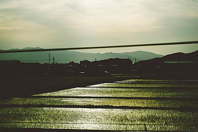 p432m2151261 by mia takahara