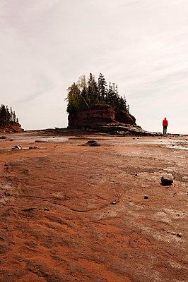Burntcoat Head in Nova Scotia - p470m2128865 by Ingrid Michel