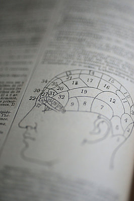 Gehirn - p829m715934 von Régis Domergue