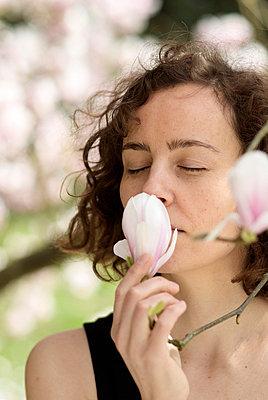 Magnolia - p3790347 by Scheller