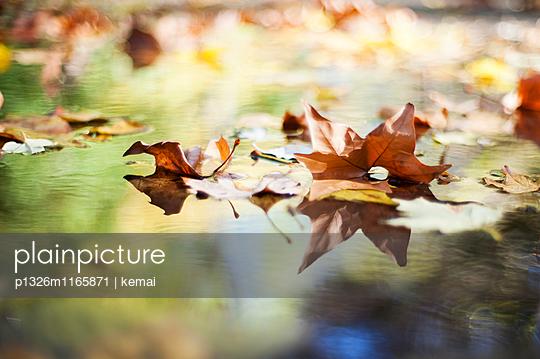Herbstpfütze - p1326m1165871 von kemai