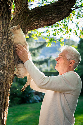 Senior with cat climbing on a tree in garden - p300m2197247 by VITTA GALLERY