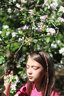 Mädchen träumt unter Kirschblütenbaum - p045m1169554 von Jasmin Sander