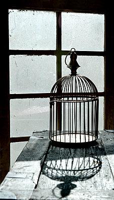 Antiker Vogelkäfig - p451m1119105 von Anja Weber-Decker