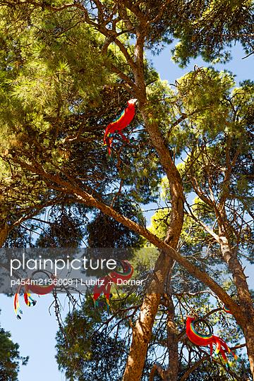 Parrot decoration - p454m2196009 by Lubitz + Dorner