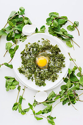 Plate of raw egg with herbs - p429m817469 by Magdalena Niemczyk - ElanArt