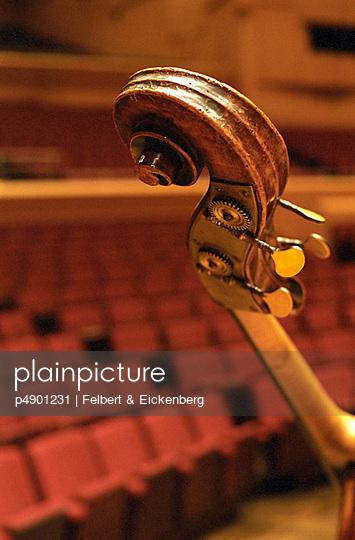 Wirbelkasten eines Streichinstruments - p4901231 von Felbert & Eickenberg