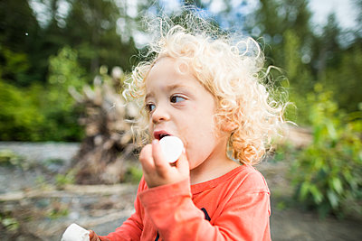 Boy eating marshmallows - p1166m2202012 by Christopher Kimmel / Alpine Edge Photography