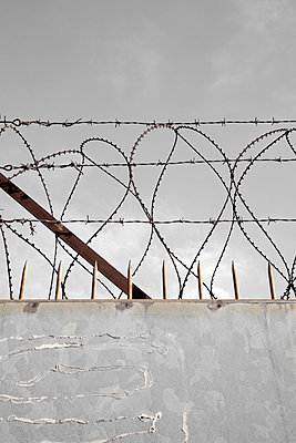 Barbed Wire on Cement Wall - p1248m2125845 by miguel sobreira