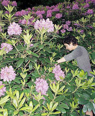 Woman hiding in rhododendron - p7810027 by Angela Franke
