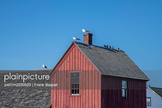 Motif Number 1, Bradley Wharf in der Hafenstadt Rockport, Massachusetts - p401m2230523 von Frank Baquet
