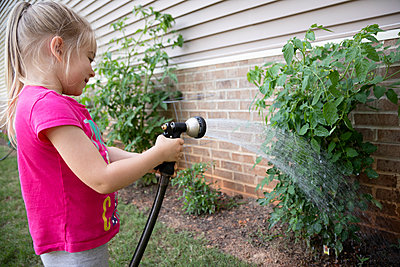 Portrait of a young girl watering their backyard garden tomatos - p1480m2148177 by Brian W. Downs