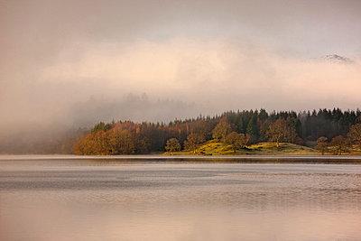 Fog rolling over rural landscape - p42918257 by Henn Photography