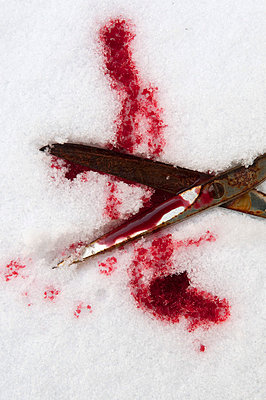 Blood in the snow - p4510769 by Anja Weber-Decker