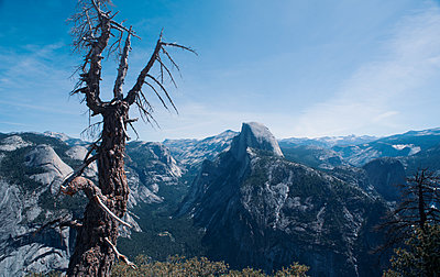 Half Dome Mountain Peak in Yosemite National Park - p1617m2205993 by Barb McKinney