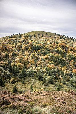 Volcano Puy de Dome - p1402m1487143 by Jerome Paressant
